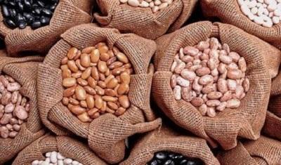 La Secretaría de Economía modifica Acuerdo para importar frijol bajo arancel-cupo